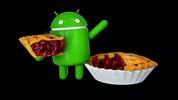 Android P'nin ismi belli oldu. İşte yeni Android!