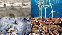 İklim değişikliğine karşı ne yapmalıyız?