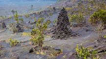 Dünyanın en yeni adasında şaşırtan keşif!