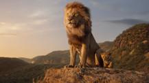 The Lion King'den ilk uzun fragman!