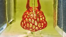 3D yazıcı ile kompleks damar ağı üretildi!