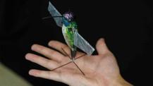 Sinek kuşu gibi uçan yapay zekalı robot kuş üretildi