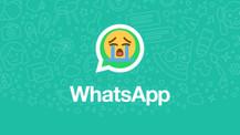 Hocam WhatsApp ağlıyor tuvalete gidebilir miyiz?