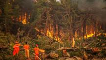 Xiaomi, Türkiye'deki yangın olaylarına yardımını açıkladı