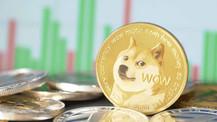 Türkiye'de 1 Milyar TL'lik Dogecoin vurgunu!