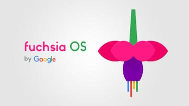 İşte Google'ın yeni işletim sistemi Fuchsia!