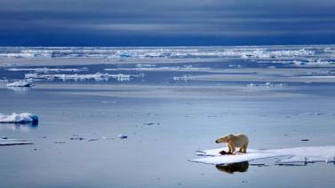 Buzul erimesi kritik seviyede