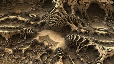 Denizli'de 9 milyon yıl öncesine ait fosiller bulundu!