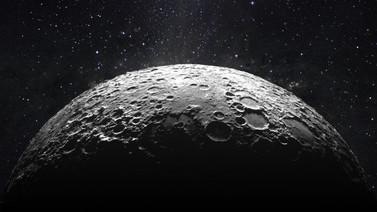 Ay'a gönderilen tohumlar hayat buldu!