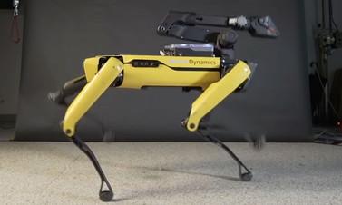 Robot Spot Mini dans ediyor!