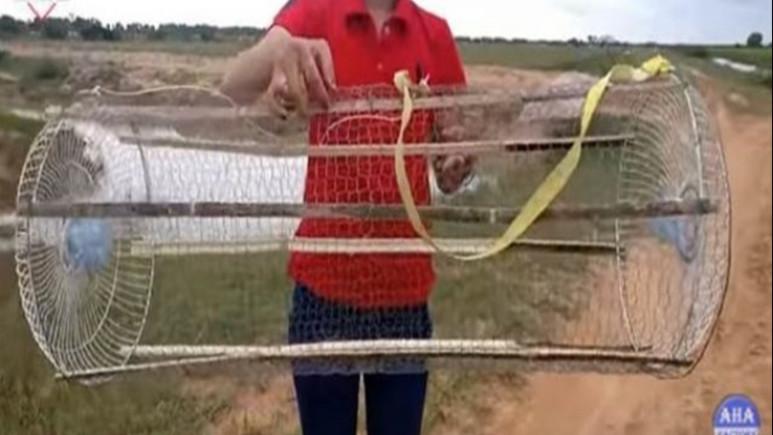 Balık tutma yöntemleri