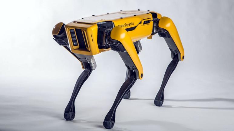 Boston Dynamics yılda 1000 robot köpek üretecek