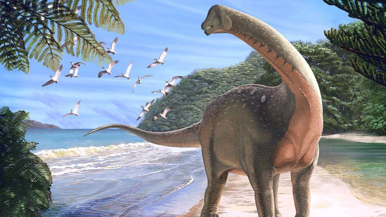 Yeni bir dinozor türü keşfedildi!