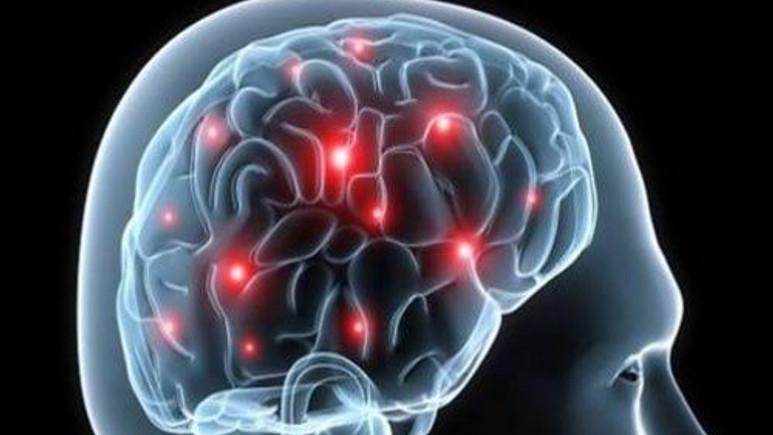 Texas Üniversitesi'nde 100 beyin çalındı!