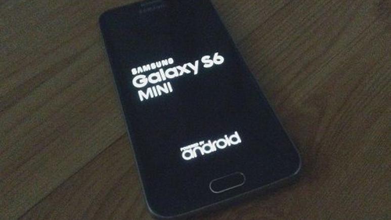Galaxy S6 mini görüntülendi! Çıkış tarihi için ağustos ayı işaret ediliyor