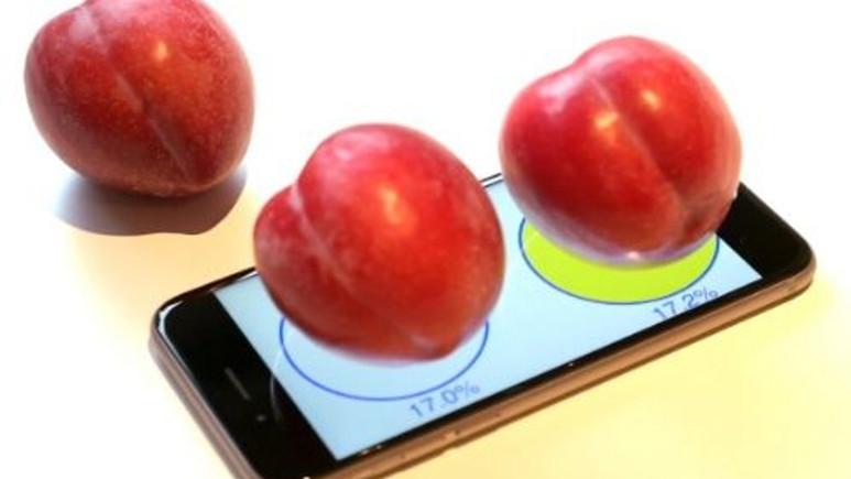 Apple iPhone 6S'i elektronik tartı olarak kullanabilirsiniz! Video