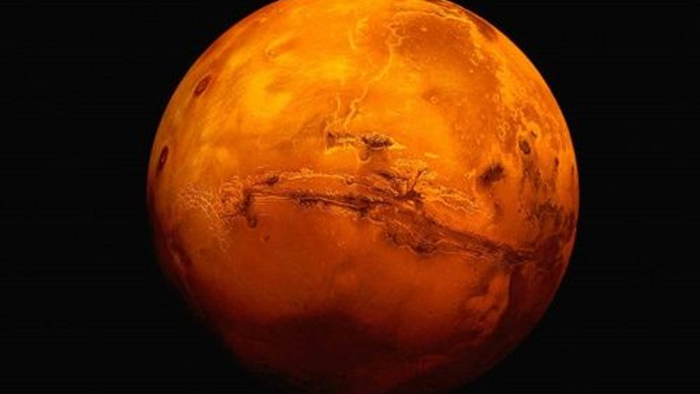 Mars'ta yaşayabilen canlı!