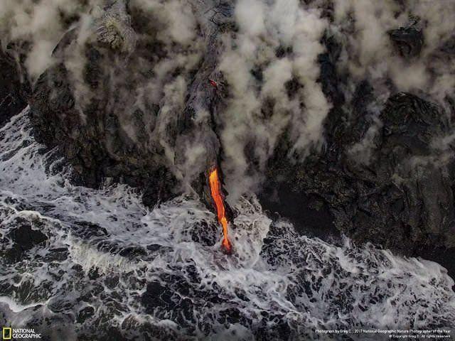 2017 Doğa Fotoğrafları Yarışması'nın kazananları - Page 1