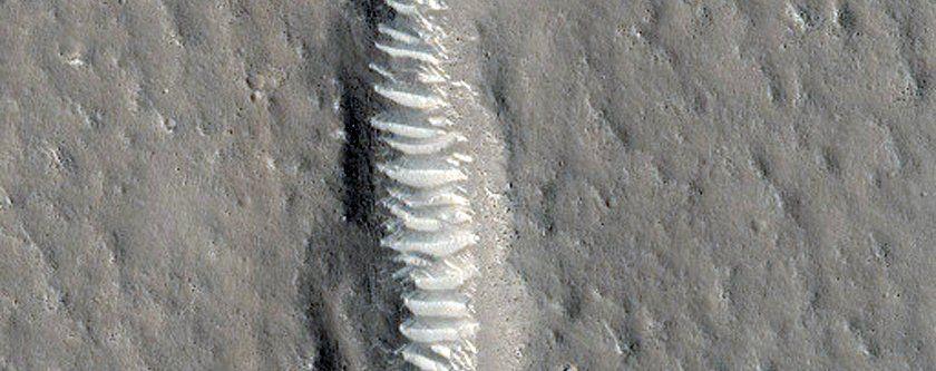 Mars'ta kış çok farklı geçiyor! - Page 2