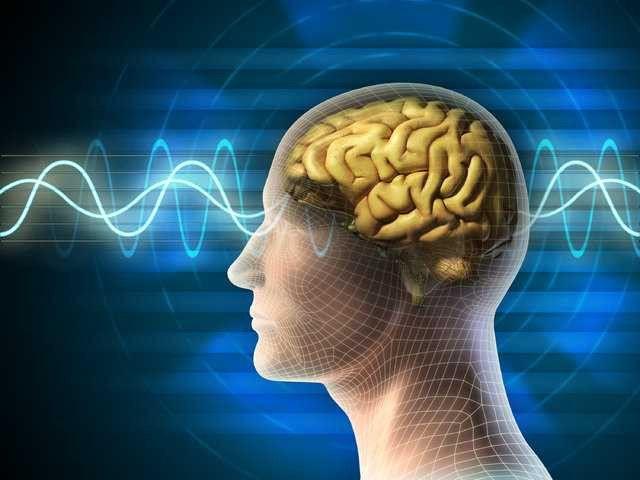 Sağ yumruk öğrenmeyi sol yumruk hafızayı kontrol edebiliyor! - Page 1