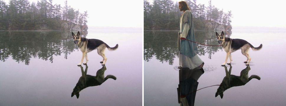 Photoshop harikası fotoğraflar! - Page 1
