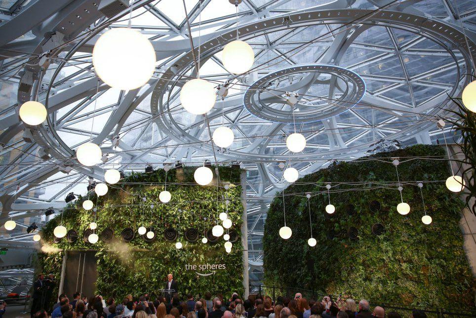 Amazon, ilham verme ümidiyle ofisini yağmur ormanlarına benzetti - Page 2