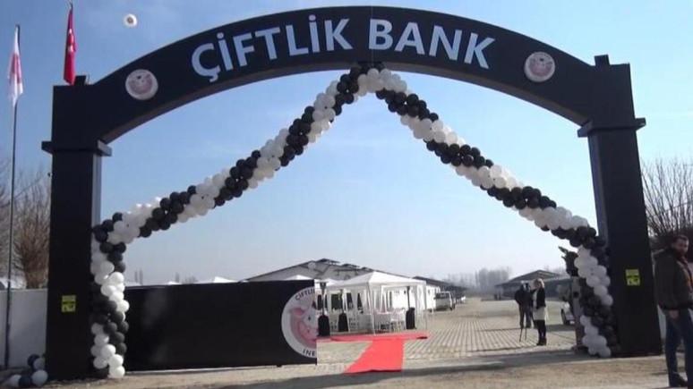 Çiftlik Bank benzerleri milyonlarca TL topladı