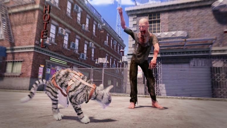 Bu oyunun kahramanı kediler!