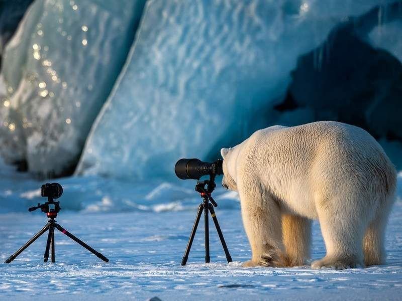 En komik doğa fotoğrafları! - Page 1