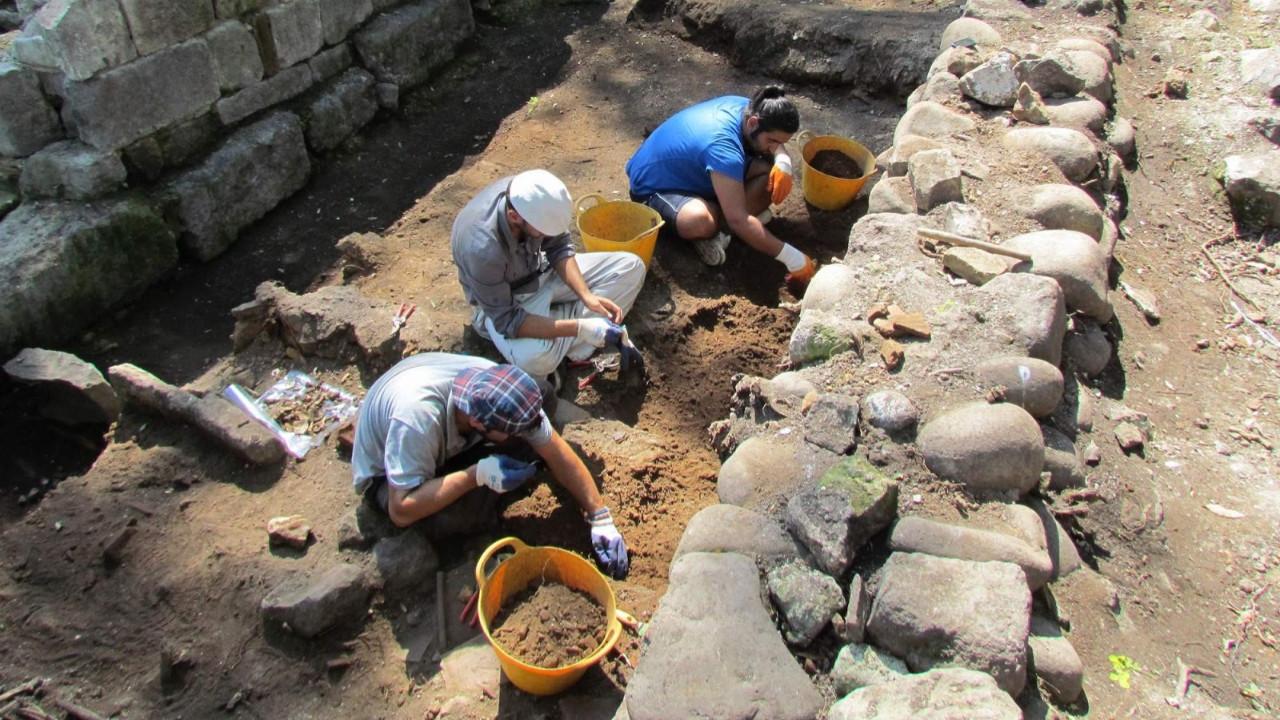 Pompei'de taşlaşmış at kalıntıları bulundu!