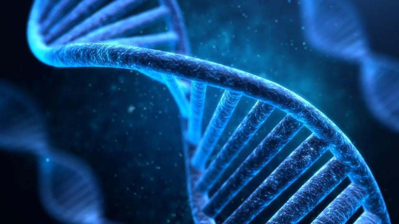 İnsan ömrü 1000 yıl olabilir!