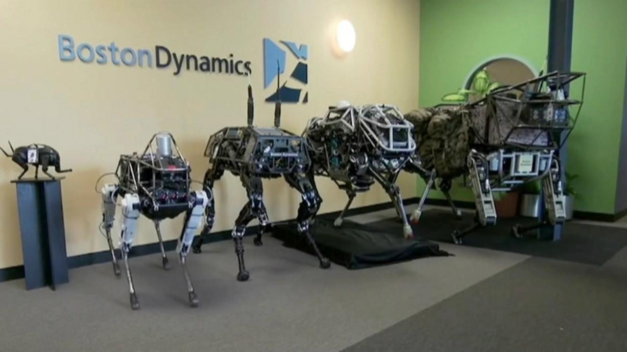 İlhamını doğadan alan 8 robot!