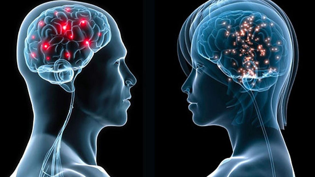 Doping Hafıza yeni nesil öğrenme deneyimi sunuyor