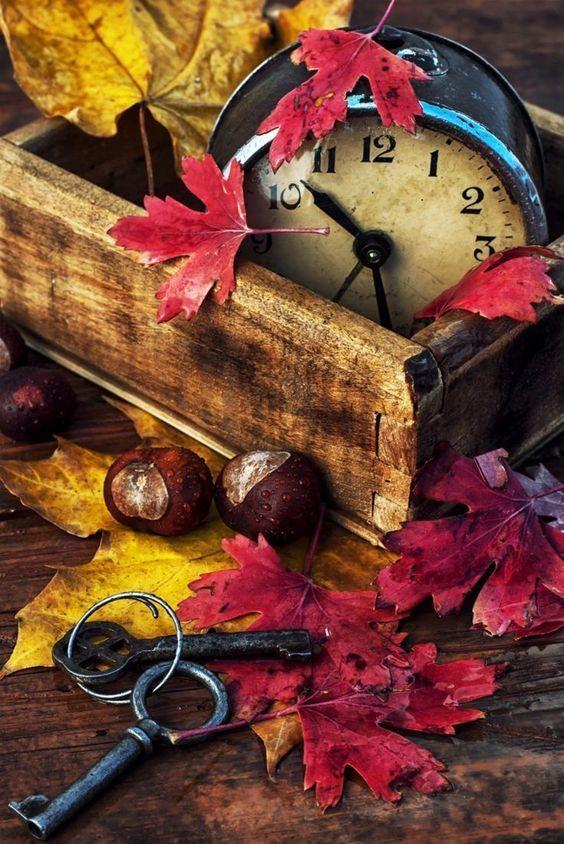 Telefonunuz için sonbahar duvar kağıtları! - Page 1