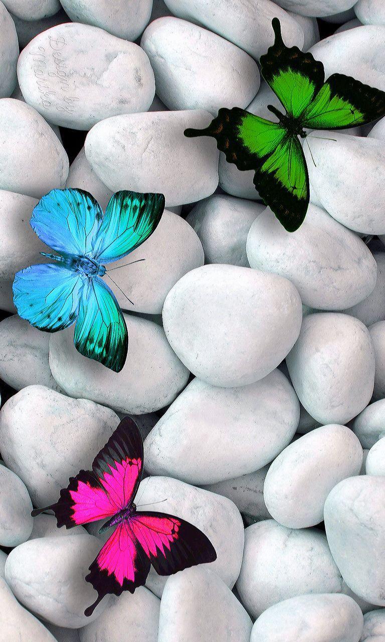 Kelebek temalı 20 harika duvar kağıdı! - Page 1
