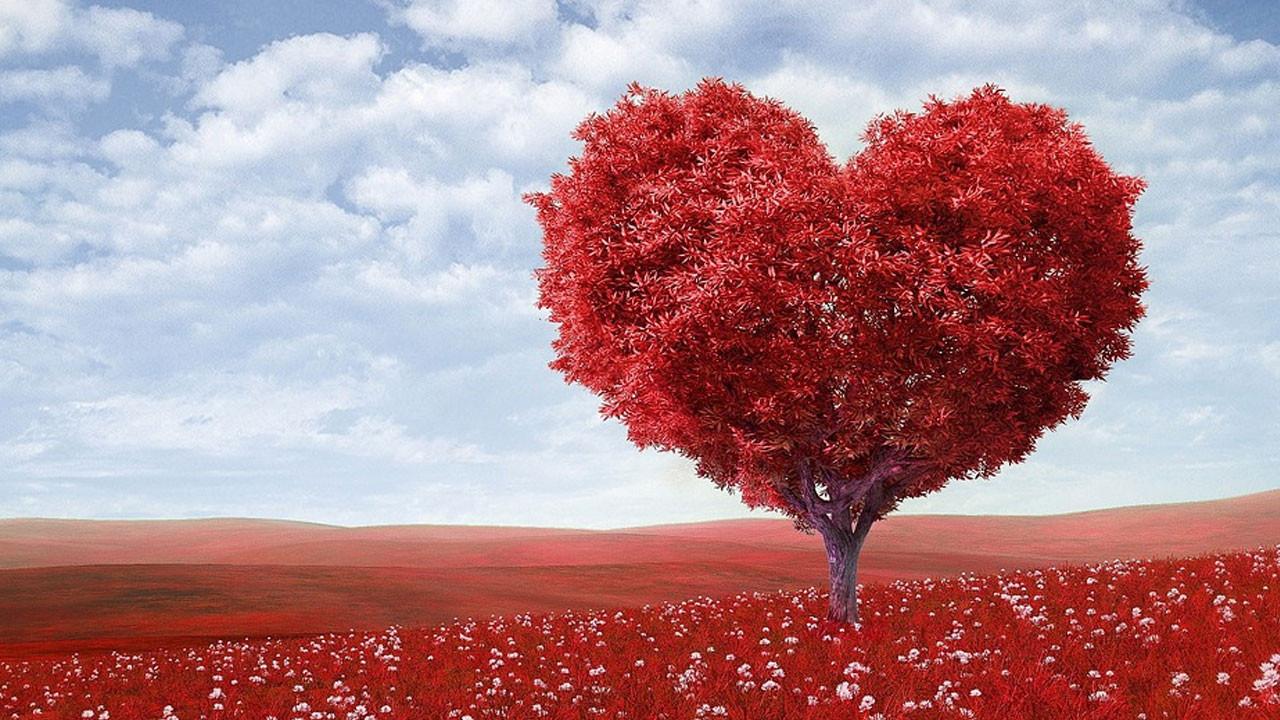MediaMarkt Sevgililer Günü kampanyası