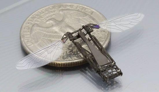 0,1 gram robot mu olur? Bu robotlara dürbünle bakalım! - Page 1