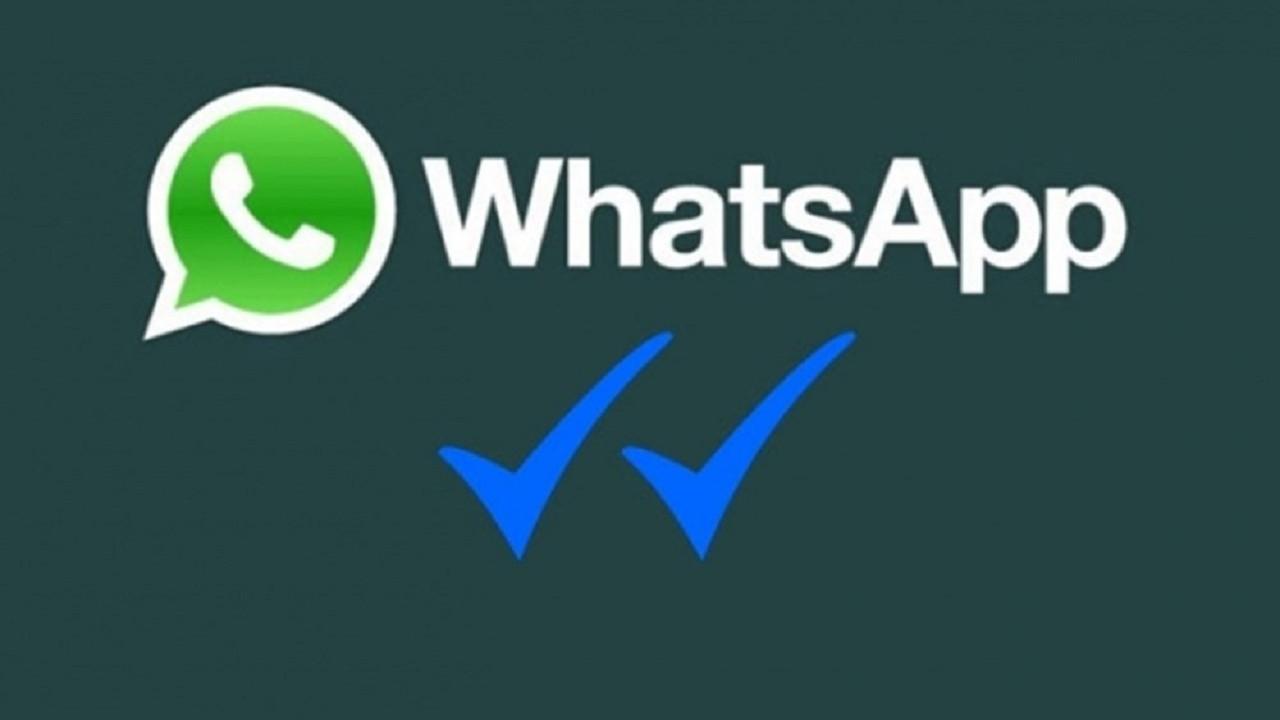 WhatsApp okundu onayı (mavi tik) nasıl kapatılır?
