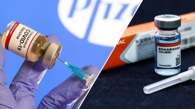 Türkiye'nin kullanacağı CoronaVac aşısı hakkında 10 önemli bilgi - Page 4