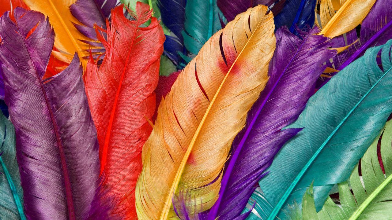 Birbirinden renkli seçme güzel duvar kağıtları! - Page 1