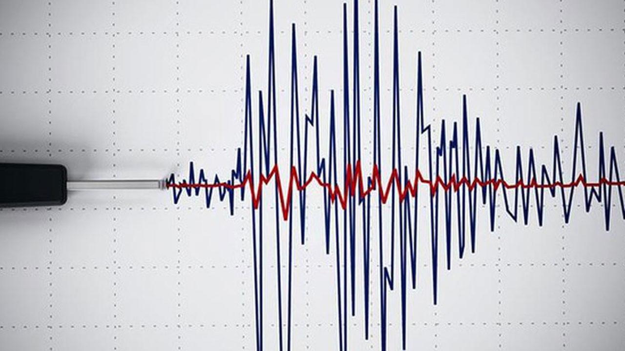 7.1 şiddetinde deprem oldu kılı bile kıpırdamadı!