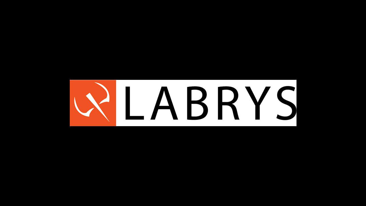 Labrys 2021'de hizmetleriyle 15 ülkeye ulaşacak