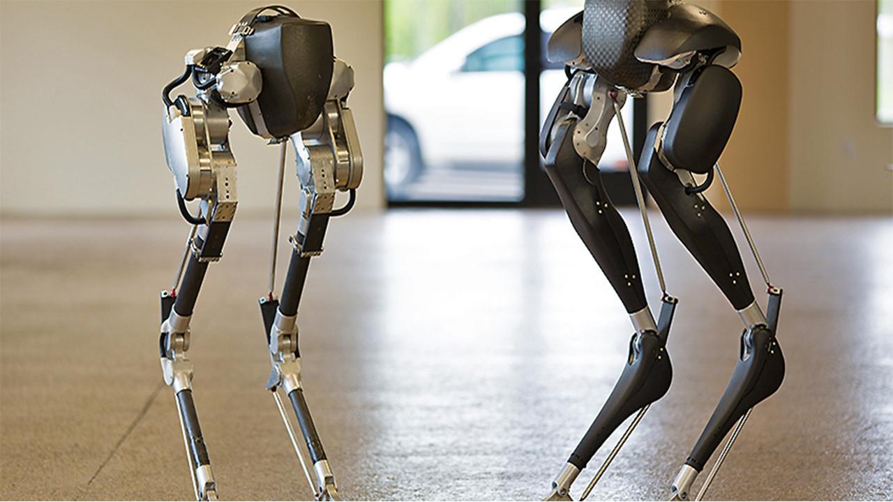 Devekuşuna benzeyen robot!