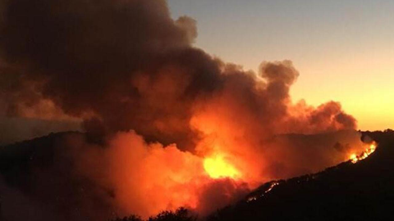 Türkiye'de yangınlar büyüyor! Korkutan açıklama