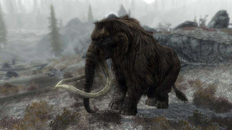 mamut 2 PNoD