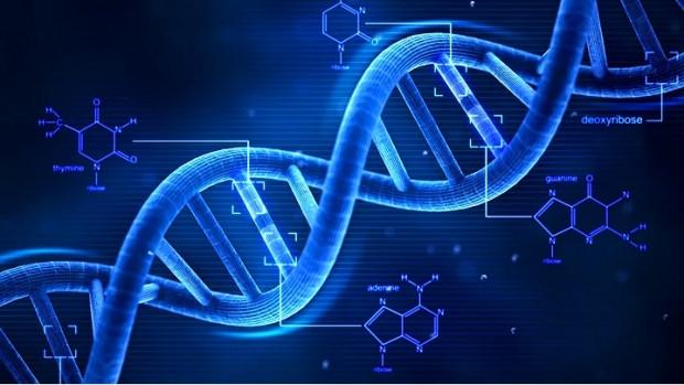 DNA hakkında 11 ilginç bilgi - Page 3