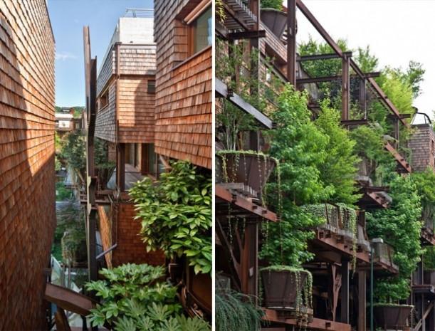 150 ağaçla muhteşem bir bina yaptı - Page 1