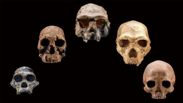 200 bin yıl sonra insan vücudu neye benzeyecek? - Page 1