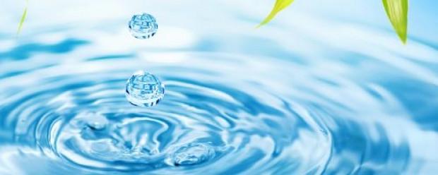 30 gün boyunca sadece su içersek ne olur? - Page 2