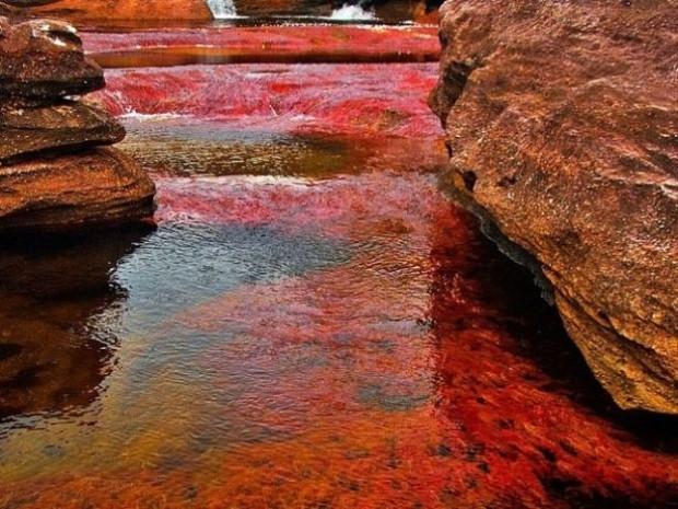 5 renk akan nehir görenleri şaşırtıyor! - Page 1